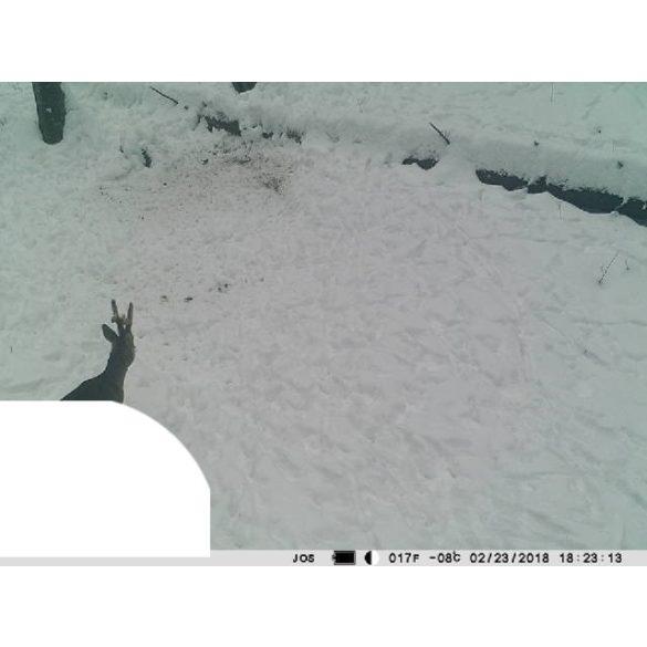PNI Vadkamera, GSM modullal, kijelzővel, 12Mp-es fotó felbontással (PNI-HUNT300C)