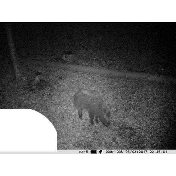 PNI Vadkamera 12Mp-es fotó felbontással (PNI-HUNT3C)